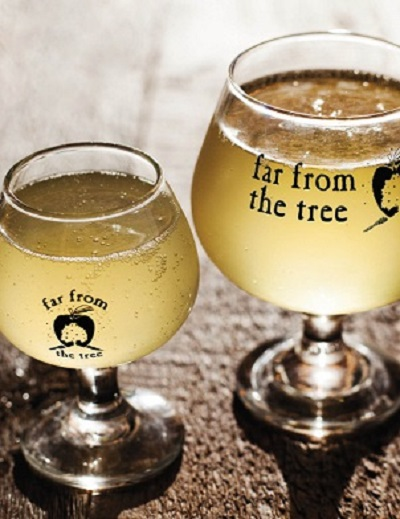 things to do in salem, far from the tree ciderpalooza 2017