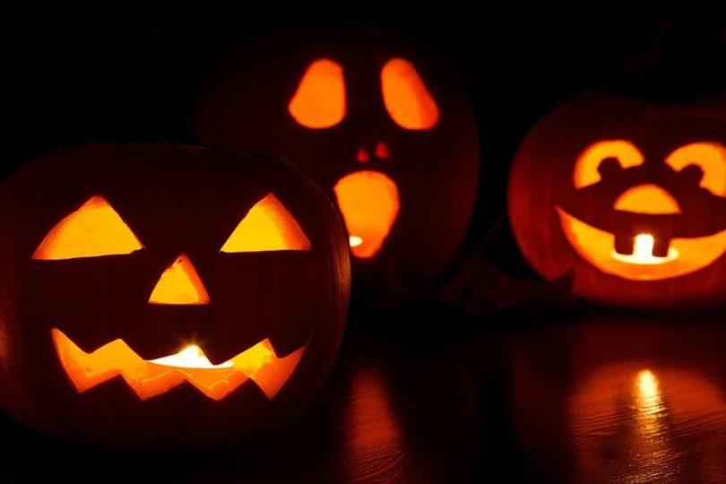 things to do in salem ma, gulu gulu cafe, cape ann brewing, pumpkin carving