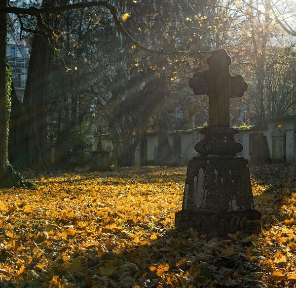 things to do in salem, salem trolley, tales and tombstones tour