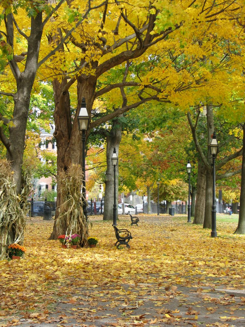 Five things that Salem, MA has taught me » Things To Do In Salem